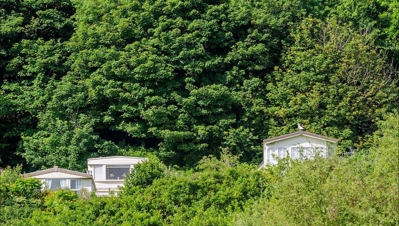static caravans nestled into the woodlands